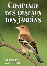image comptage oiseaux